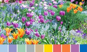 spring-colors